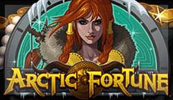 игровой автомат Arctic Fortune