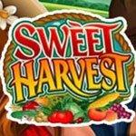 игровой автомат Sweet Harvest