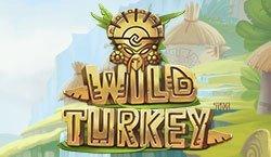 Игровой автомат Wild Turkey