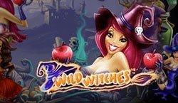 играть в Wild Witches бесплатно